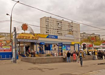 Станция метро Царицыно